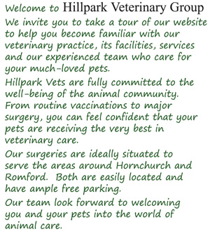 Welcome to Hillpark Veterinary Group We invite you to take a tour of our website to�help you become familiar with our veterinary practice, its facilities, services and our experienced team who care for your much-loved pets. Hillpark Vets are fully committed to the well-being of the animal community. From routine vaccinations to major surgery, you can feel confident that your pets are receiving the very best in veterinary care. Our surgeries are ideally situated to serve the areas around Hornchurch and Romford. Both are easily located and have ample free parking. Our team look forward to welcoming you and your pets into the world of animal care.